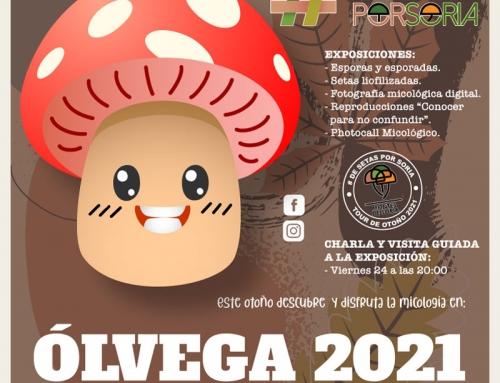 De setas por Soria – Ólvega 2021