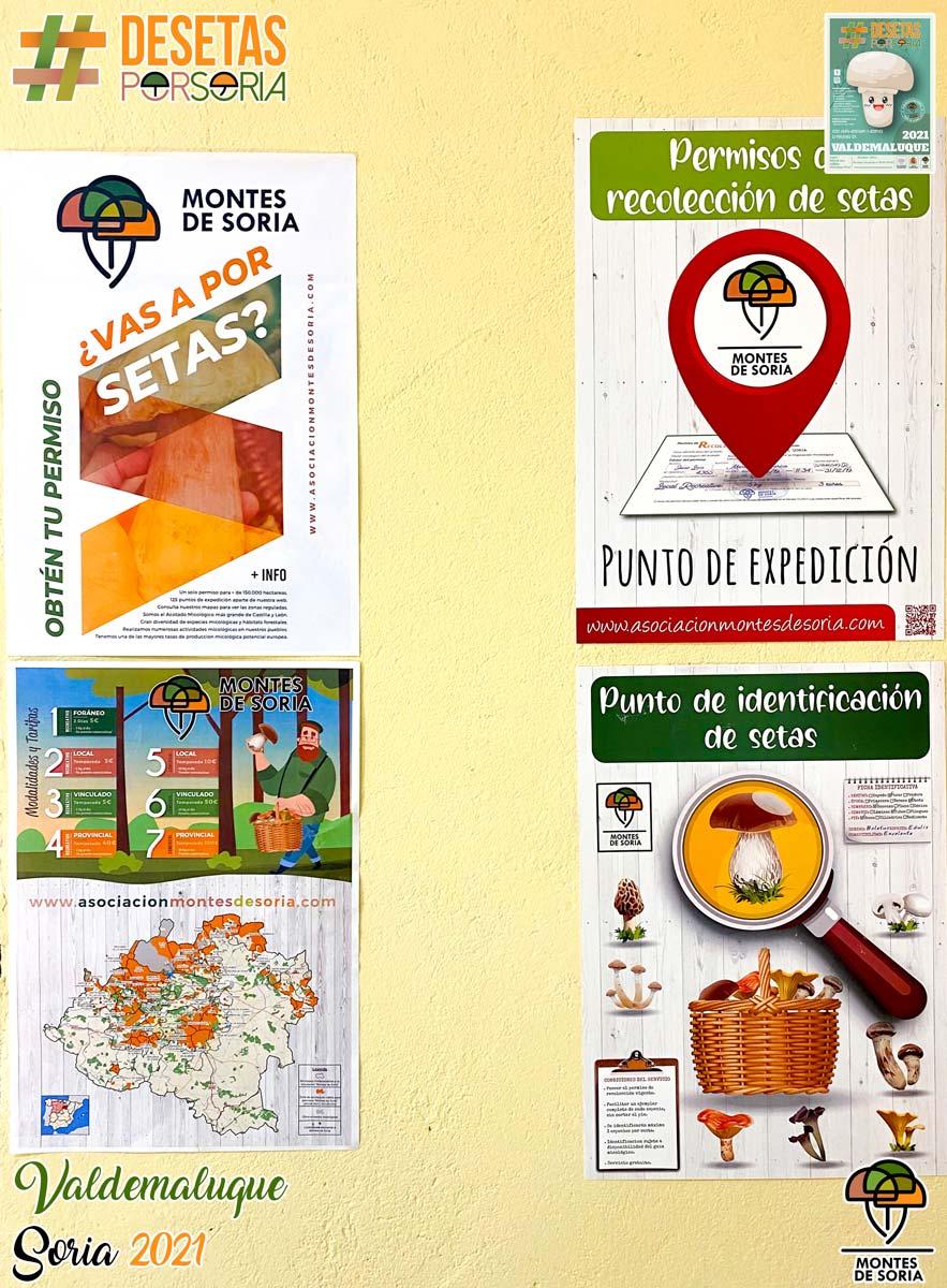 De setas por Soria - Valdemaluque 2021 carteles