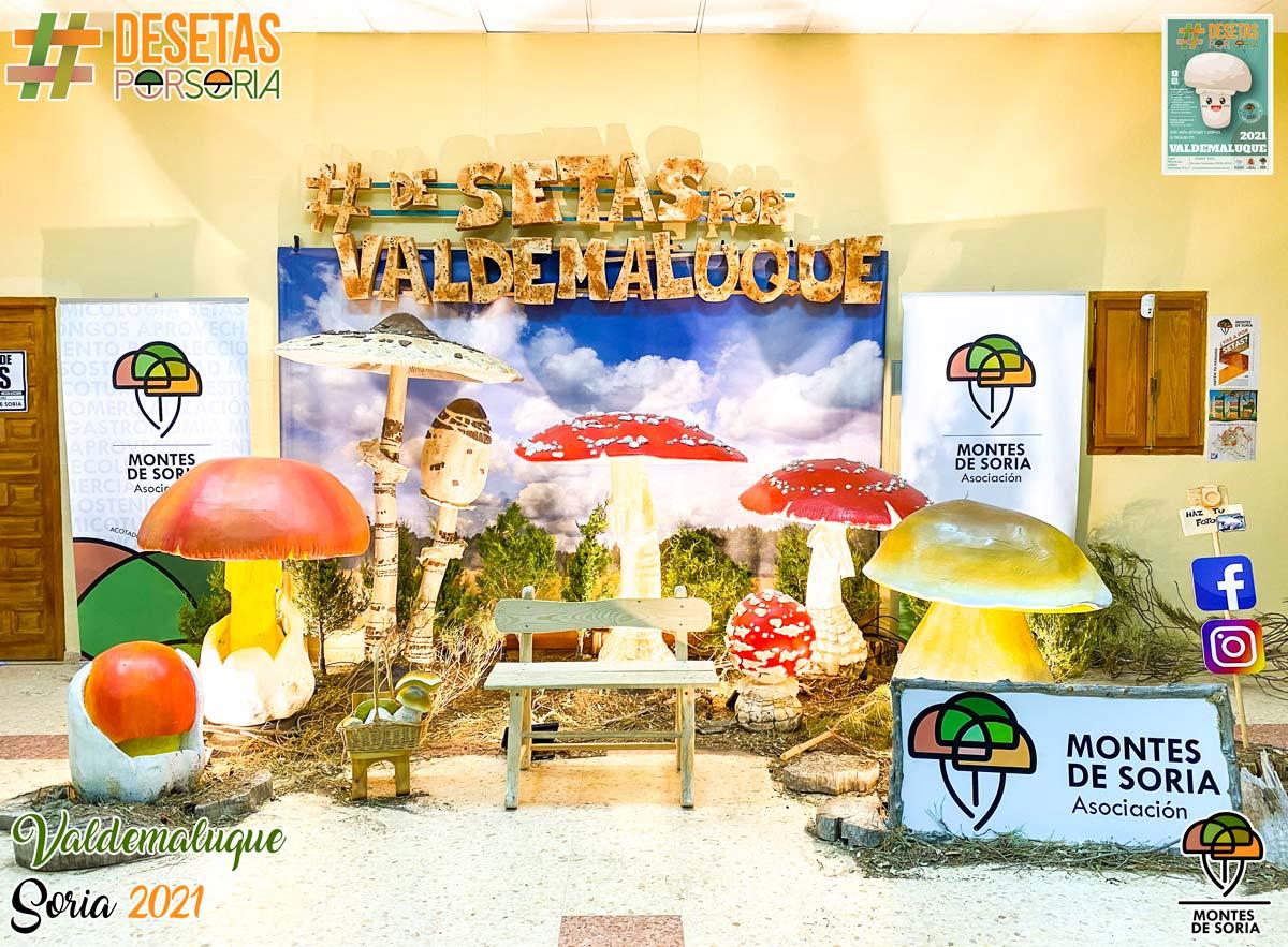 De setas por Soria - Valdemaluque 2021 photocall
