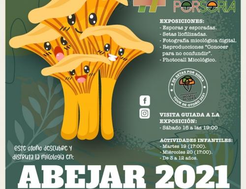 De setas por Soria – Abejar 2021