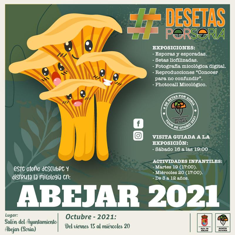De setas por Soria - Abejar 2021 portada