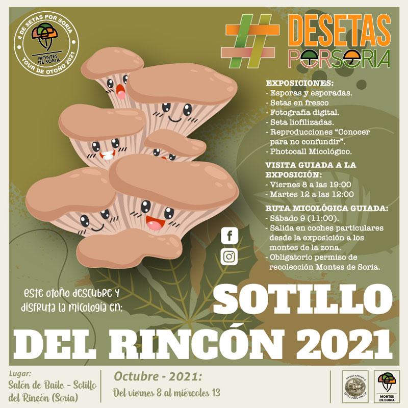 De setas por Soria - Sotillo del Rincón 2021 Portada